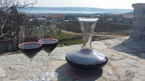 OPCIJA TOURS-WINERY VIEW
